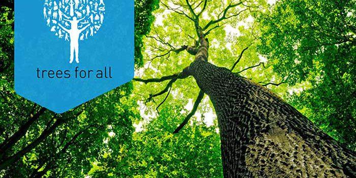 plant-het-voort-trees-for-all
